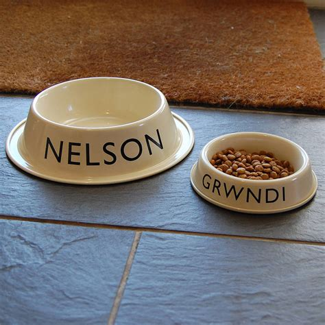 personalised bowls personalised pet bowl by adra notonthehighstreet