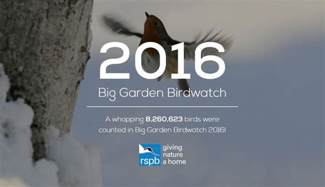 Rspb Great Garden Birdwatch Results Are In by The Rspb Big Garden Birdwatch Results 2016