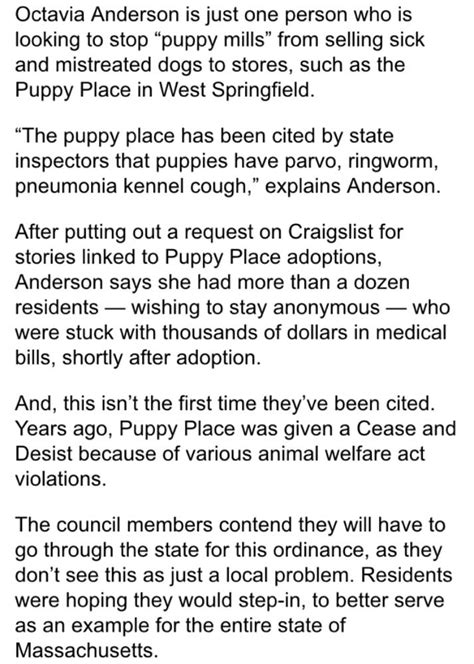puppy place west springfield your days are numbered puppy stores yelp
