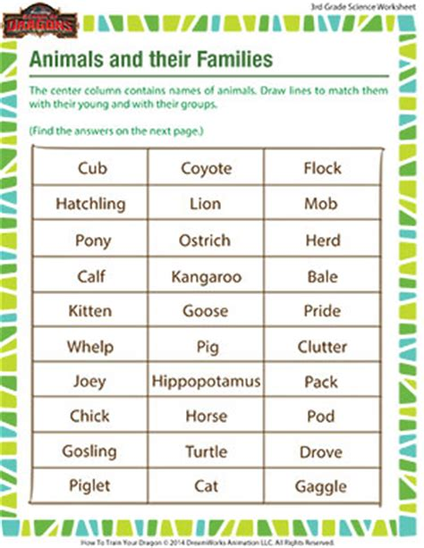 Grade 3 School Worksheets by Animals And Their Families Worksheet Free Grade 3