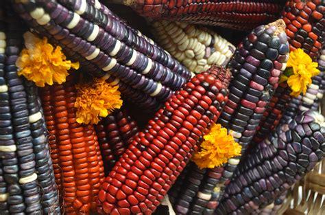 el corn clsicos de arquitectura prehisp 225 nica mesoamericana