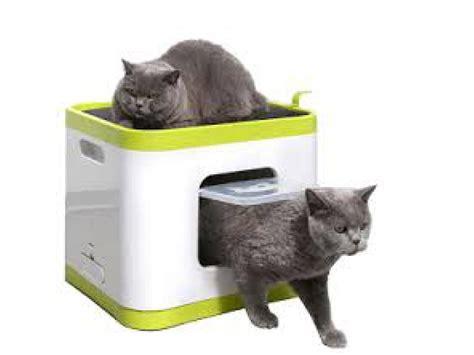 cassetta per gatti cassetta igienica per gatto cubo