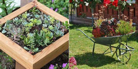 decorar con plantas suculentas 50 ideas para decorar con plantas suculentas plantas