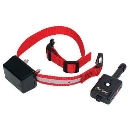 innotek collar innotek collar with remote 1800petmeds