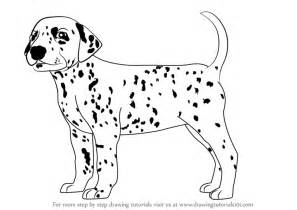 learn how to dogs learn how to draw a dalmatian dogs step by step drawing tutorials