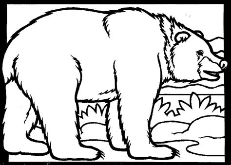 black bear coloring page az coloring pages