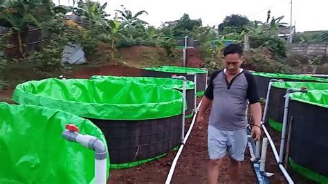 cara membuat hidroponik kolam cara dan biaya membuat kolam terpal bulat yang praktis