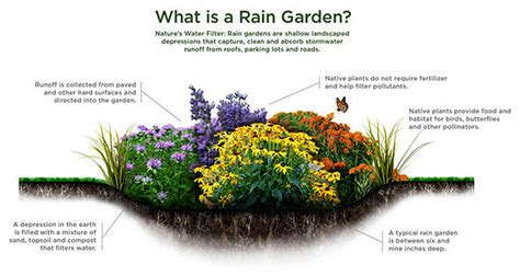 Home Design Plans Utah by Rain Gardens The Nature Conservancy