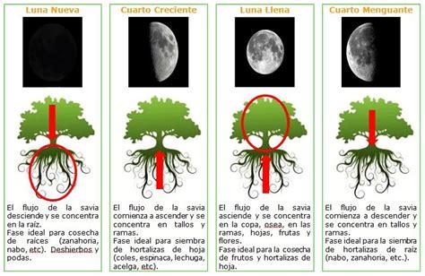 Calendario De Fertilizacion Calendario Lunar Cann 225 Bico Cultivo Marihuana 2017