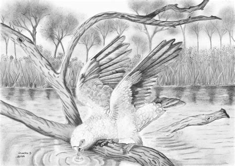 best sketch best drawing of nature drawing of sketch