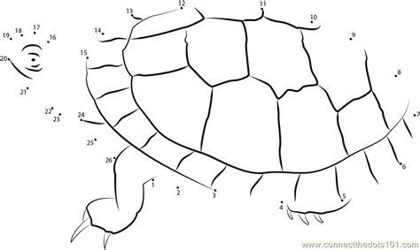 dot to dot turtle printable southern painted turtle dot to dot printable worksheet