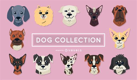 set of puppy set of illustrations vector