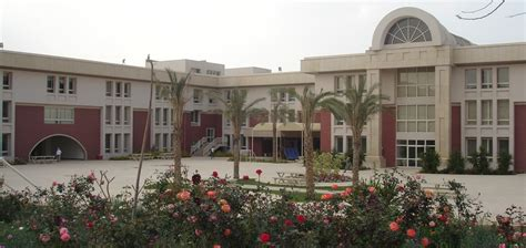 American In Cairo Mba Fees by American International School Of Admissions