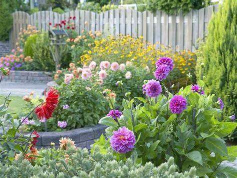 Dahlia Flower In Home Garden Home Landscaping Home Garden Flowers