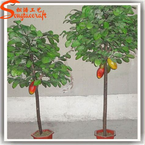 fruit tree day nursery professional supplier fruit tree nursery for decoration