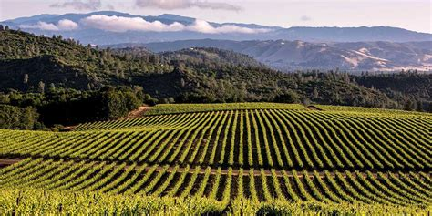 best places to buy a house in california amazing wine country destinations visit california