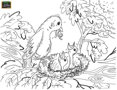 early bird coloring page the early bird gets the worm free coloring page for your