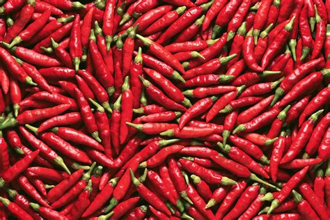 chili peppers the science of chili peppers jstor daily