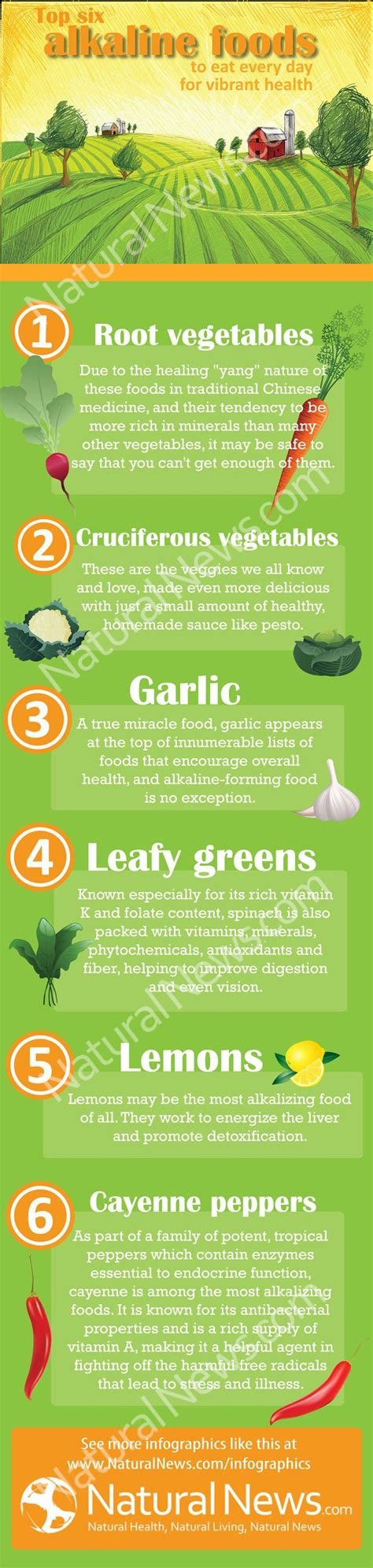 Foods Detox And Alkalize by 17 Best Images About Alkaline Foods On
