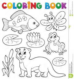 color books coloring book river fauna image 1 royalty free stock