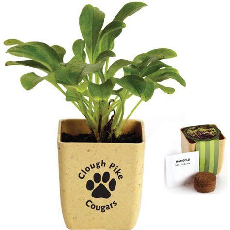 Custom Flower custom ceramic flower pot mug usimprints