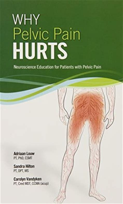 pelvic explained what you need to books why pelvic hurts 8742 by adriaan louw reviews