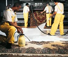 rug cleaning nashville rug cleaning rug cleaning tn rug repair 38104 fred remmers rug cleaners