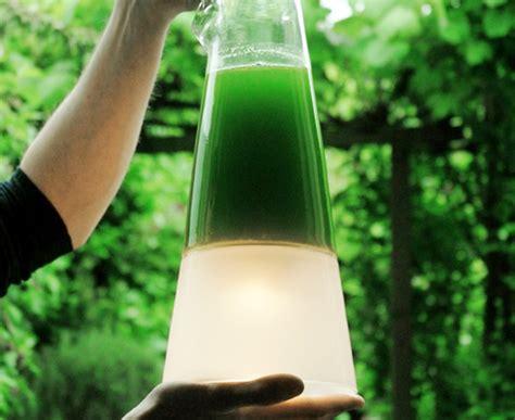 designboom ed thompson v erfindungen gt quot latro quot algenle strom bzw licht