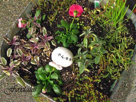winter herb garden foxtales winter herb garden