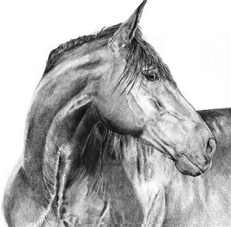 imagenes en blanco y negro de caballos pintura moderna y fotograf 237 a art 237 stica blanco y negro