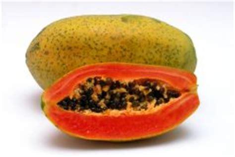 wann ist papaya reif papaya pflanzen 187 alles was sie wissen m 252 ssen