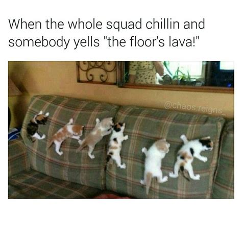 memebase the floor is lava all your memes in our base