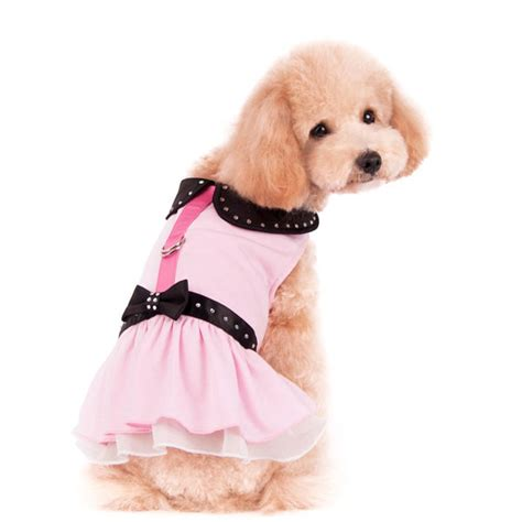 sassy puppy sweet n sassy dress at glamourmutt