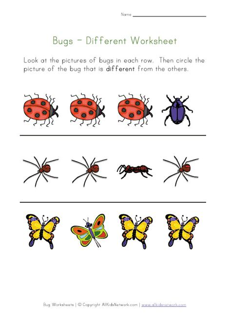 kids bug and insects worksheets bugs worksheet recognize different insects