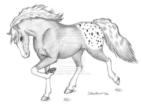 Beautiful And Easy Drawings To Draw Of Horses Drawing Art Library Easy Drawing For