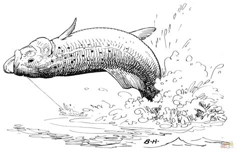 Trout Jump 2 Coloring Page Free Printable Coloring Pages
