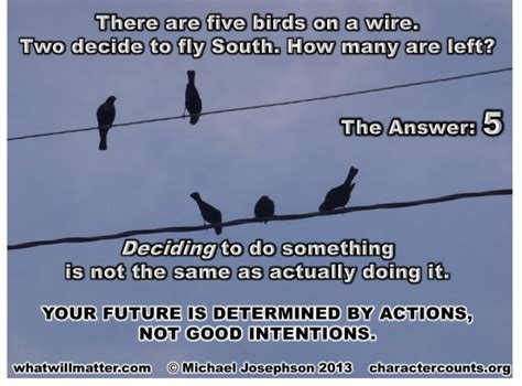 bird   wire quotes image quotes  hippoquotescom