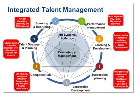 starting a talent development program what works in talent development books a new talent management framework bersin by deloitte