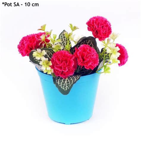 pot tanaman kecil hias kaktus pot mini   bulat warna