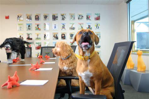 petplan reviews pet insurance consumersadvocateorg