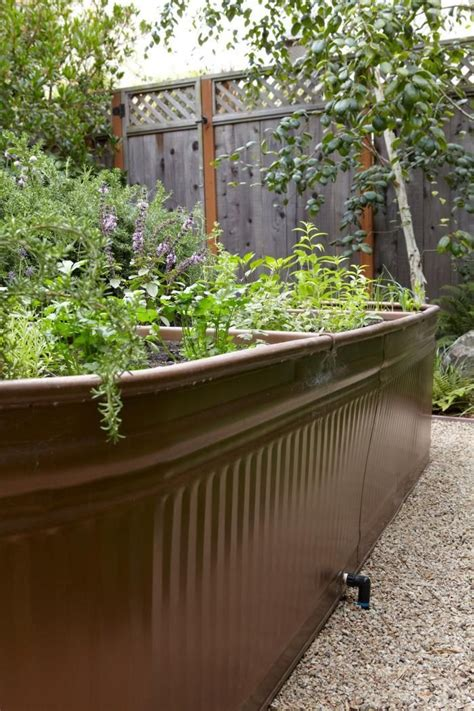 Galvanized Water Trough Planter by 25 Best Ideas About Galvanized Water Trough On