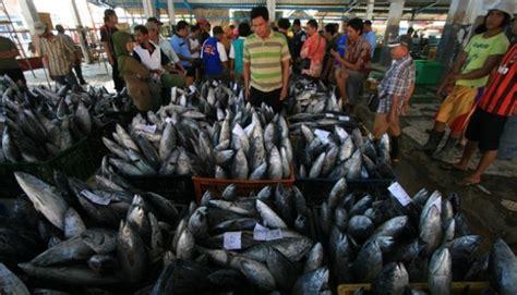 Tempat Pemanggang Ikan jumlah ikan di dunia saat ini hanya setengah dari tahun 1950 jejamo