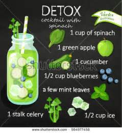 Detox Restaurant recipe detox cocktail cucumber blueberry stock vector