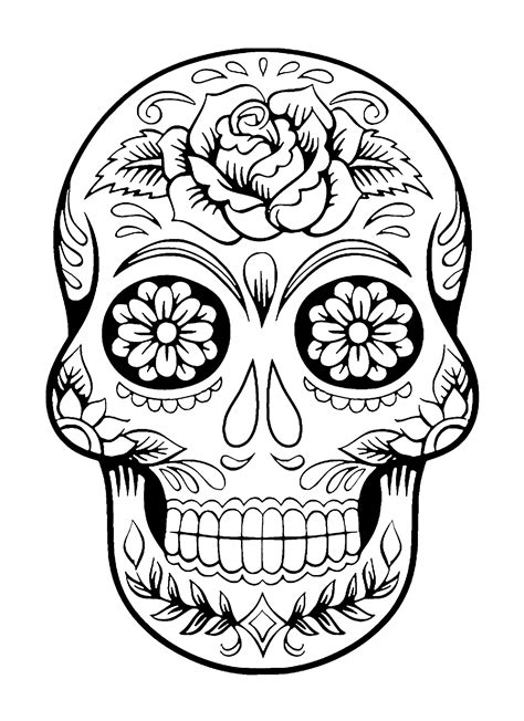 skull color skull coloring pages for adults