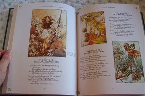 flower fairies of the books the complete book of the flower fairies waldorf by