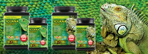 Vitamin Iguana exo terra malta
