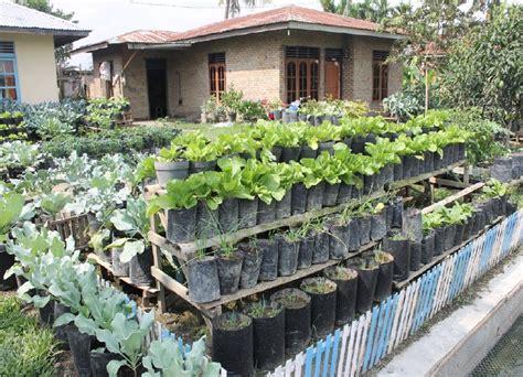 Sabun Madu Herbal ide agrikultur pemanfaatan lahan tidur atau lahan
