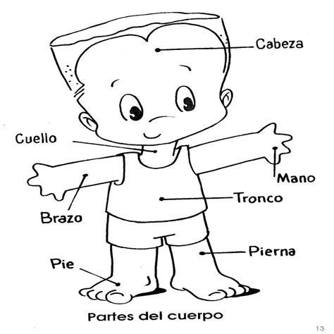 imagenes infantiles del cuerpo humano fichas infantiles fichas del cuerpo humano para infantil