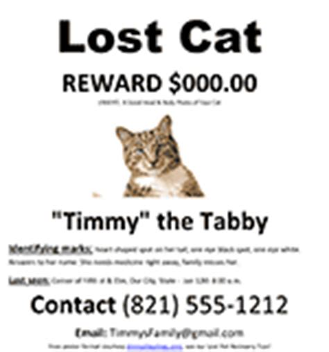Free Lost Dog Cat Missing Pet Poster Ms Word Template Lost Cat Poster Template Free