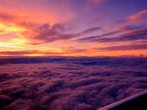 Are Animals Color Blind Sunset Above The Clouds Inspirely